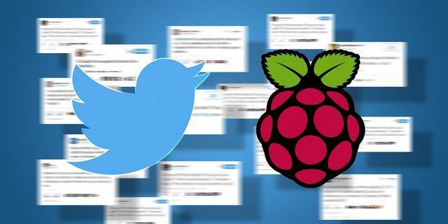 10 Meilleurs projets bot twitter pour pi framboise