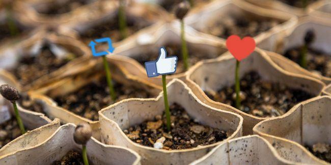 10 Outils pour créer des images incroyables de médias sociaux partageables