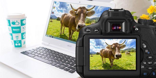 7 Photos que vous pouvez prendre pour un fond d`écran parfait