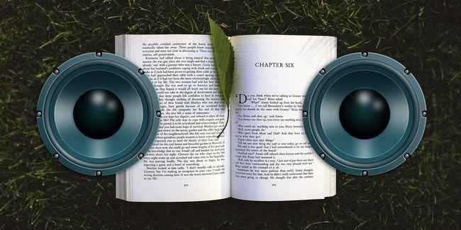 L`audition est de croire: les meilleurs livres sonores racontés par des auteurs