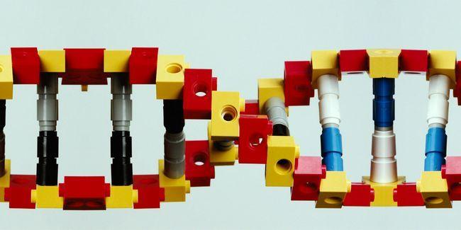 Comment « legos moléculaire » porte ouverte à la vraie nanotechnologie