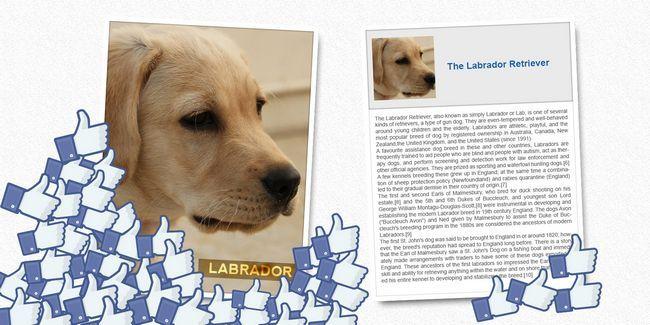 Comment créer des images efficaces pour votre page facebook