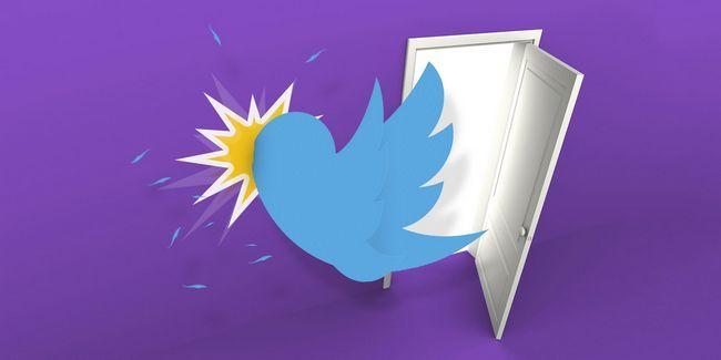 Comment utiliser twitter sans vissage