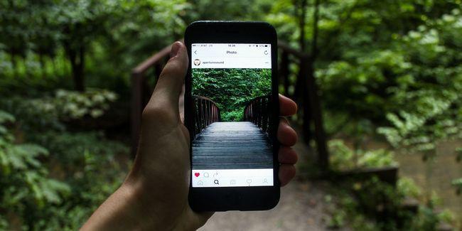 Gousses d`instagram: tout ce que vous devez savoir