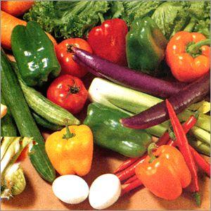 Gérer votre vie réelle parcelle de légumes en ligne gratuitement en direct avec vga