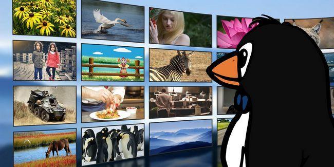 L`état actuel des services de streaming vidéo sur linux