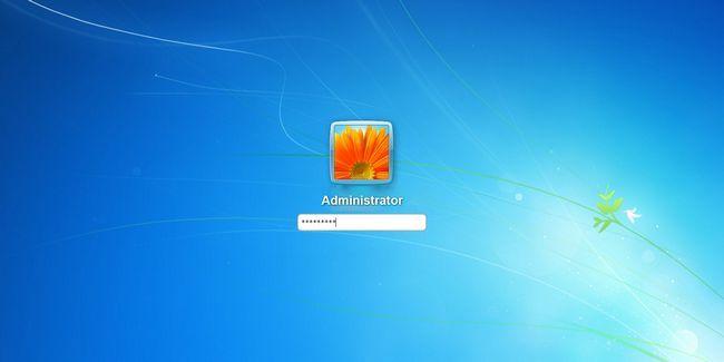 Compte administrateur windows: tout ce que vous devez savoir
