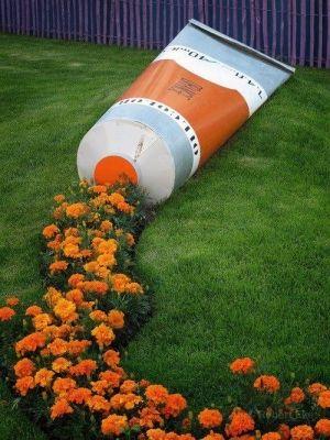 Идея для цветника: цветы,