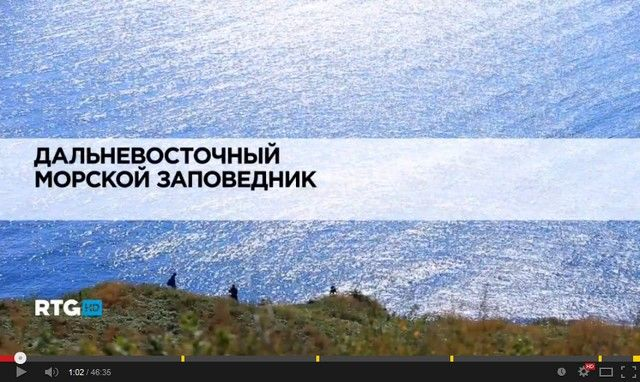 Дальневосточный морской заповедник (видео)
