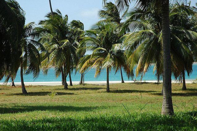 Мафия — тропический и рыболовный рай